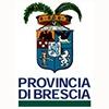 Provincia di Brescia è Partner del Liceo Foppa Brescia